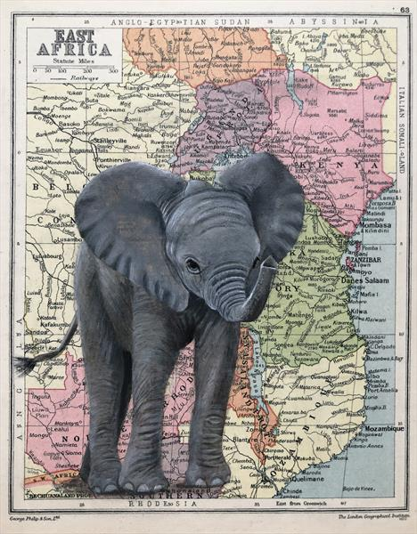 Baby Elephant on Antique African Map by jane Wilson