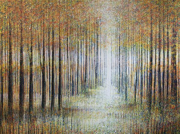 Light Through Autumn Trees by Marc Todd