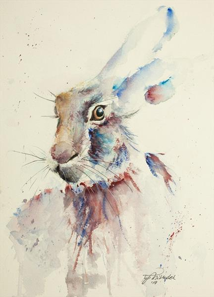 Hare by Tomasz Mikutel