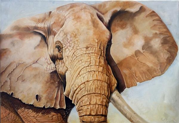 One Tusk by Gary Wakeham