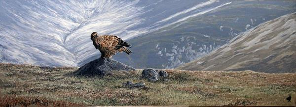 Eagle On The Glen