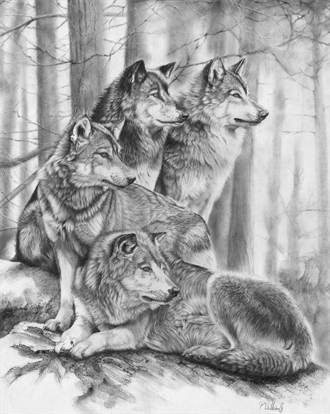 Wolf Pack - reserved for VD by Peter Williams