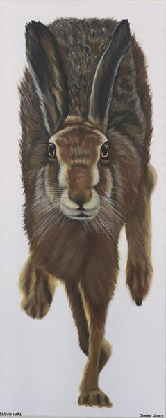 Brown Hare  by Jennie James