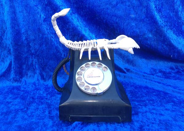 Scorpion Telephone by Gary Hogben