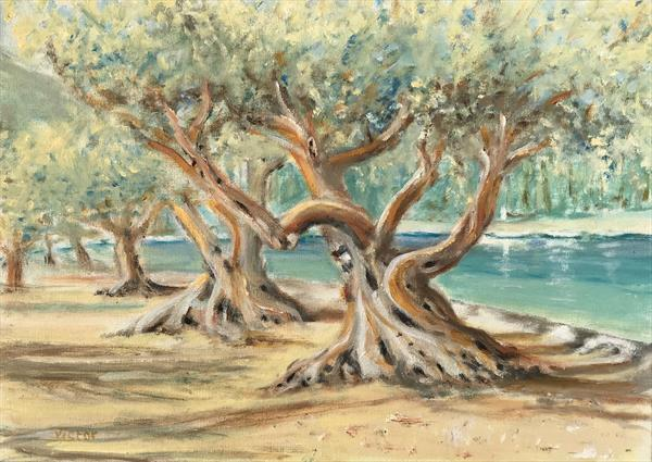 Greek olive grove next to the sea. by Victor White