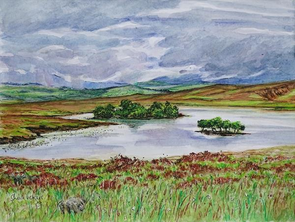 Achentoul, Sutherland by Sheila Vickers