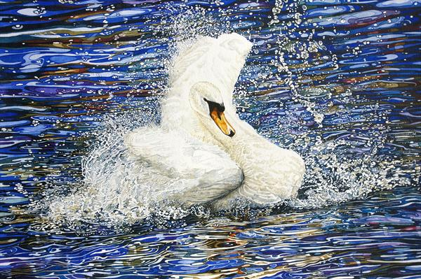Splashing To the Crowd by Rhian Symes