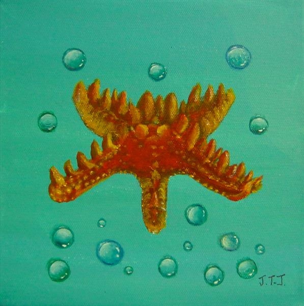Starfish by Jean Tatton Jones
