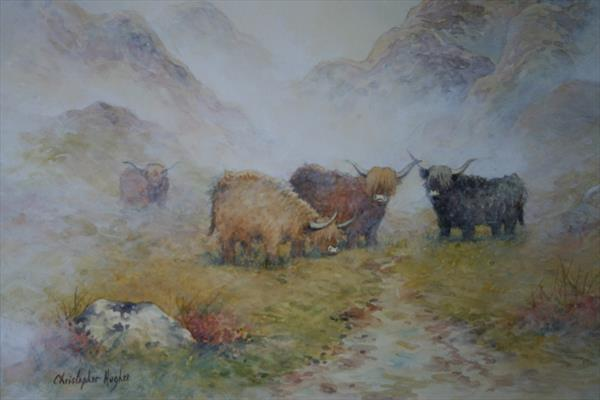 Highland Cattle in The Mist by Christopher Hughes