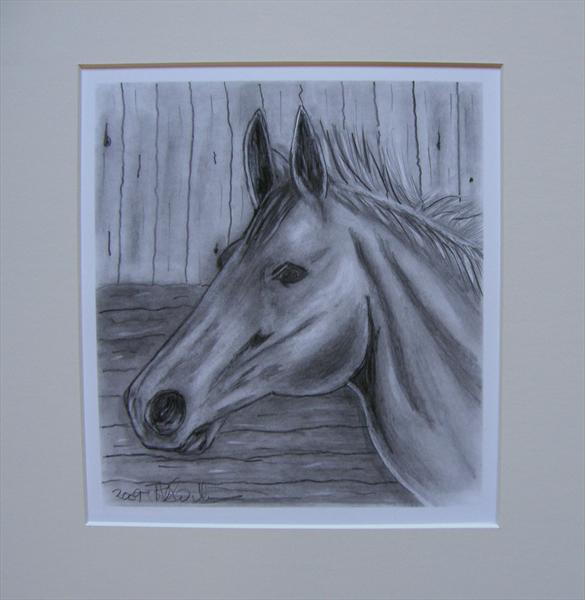 Horse by Patricia Williams