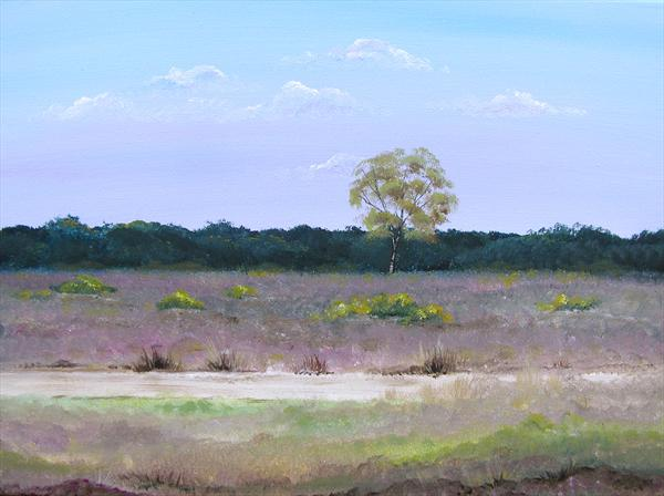 New Forest Heath by Sarah Featherstone