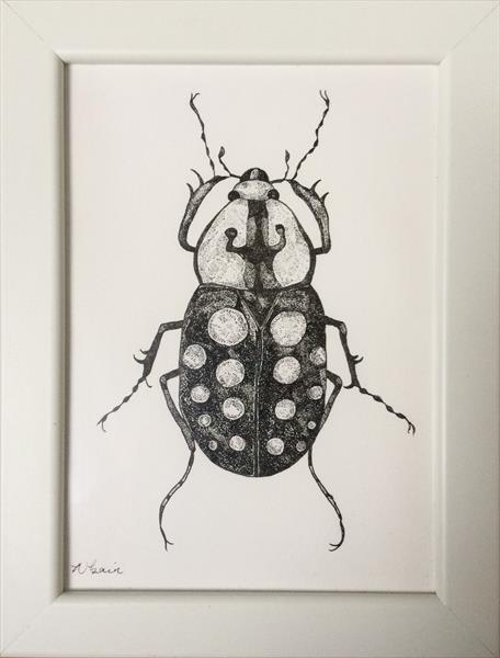 Spotted Beetle by Natalie Bain