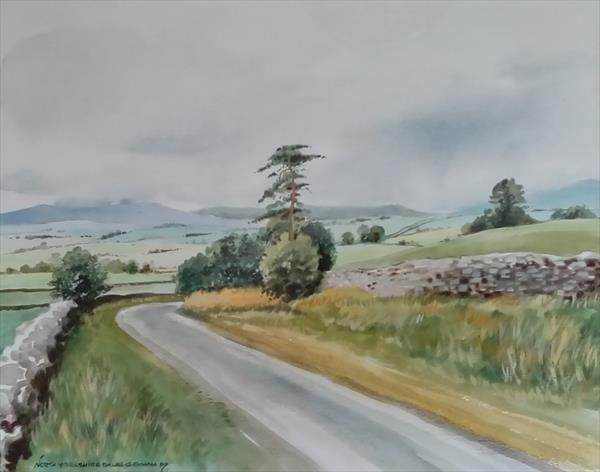 Day in the Yorkshire dales by Gwyn Bevan