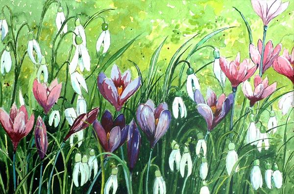 CROCUS AND SNOWDROPS by Ted Hallett
