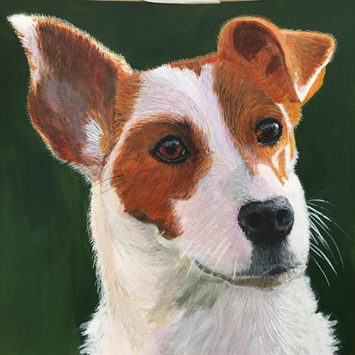 Jacky Boy - Jack Russell by ELAINE ASKEW