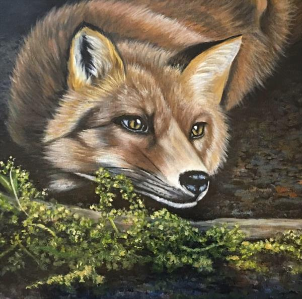 Fox by Jennie James