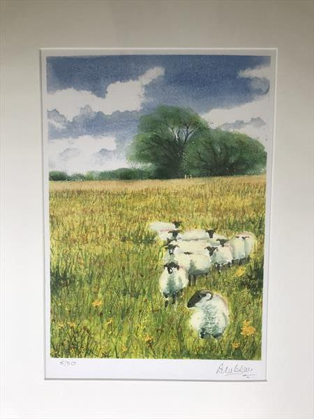 Brimpts Farm flower meadow by Peter Blake