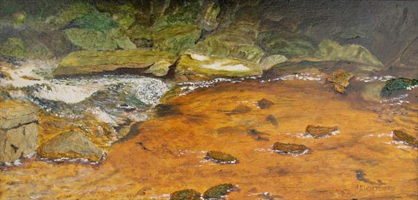 Stream, Isle of Man by Anthony Keith Whitehead