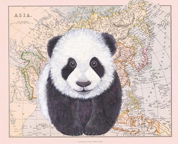 Panda and Map of Asia Limited Edition Print by jane Wilson