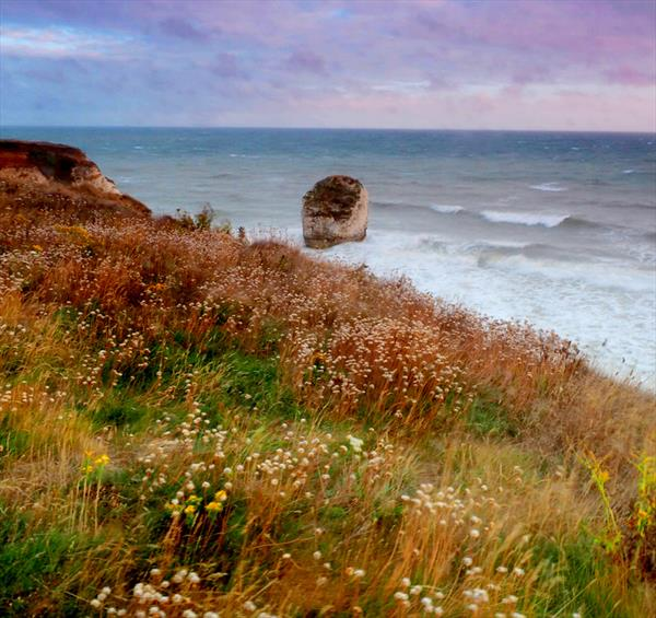 FRESHWATER BAY (LIMITED EDITION 1-20) by Peter Holzapfel