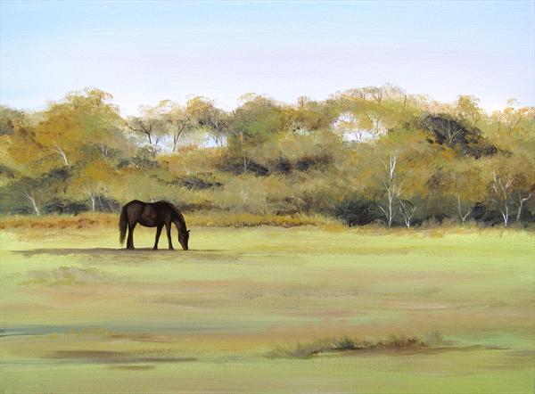 New Forest Pony by Sarah Featherstone