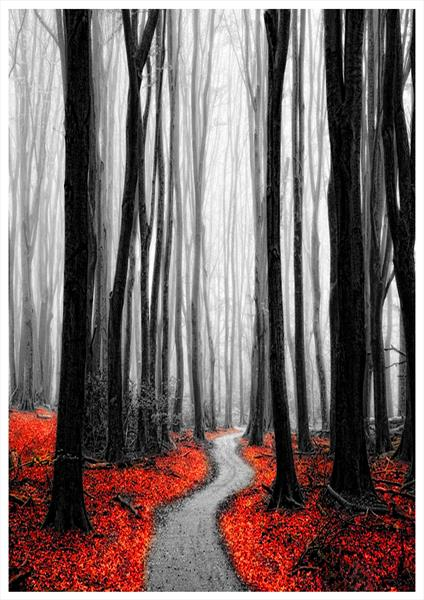 Red Leafs IV by Neil Hemsley
