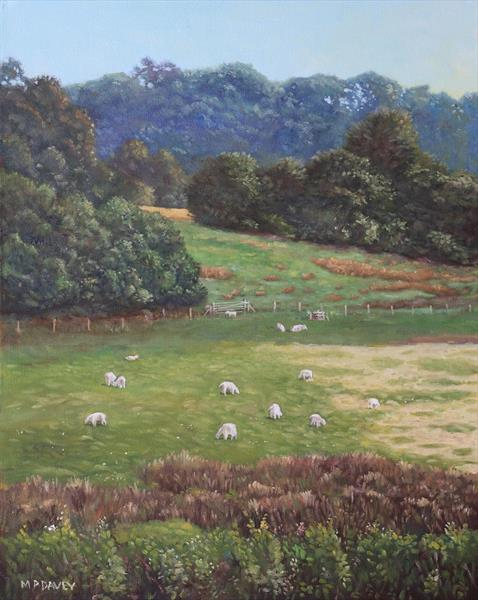 Sheep In A Field In The Devon Countryside by Martin  Davey