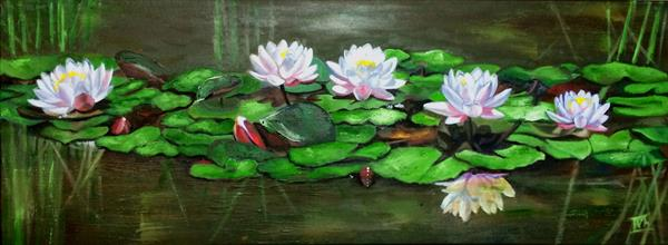 Water lilies in a poind by Ira Whittaker