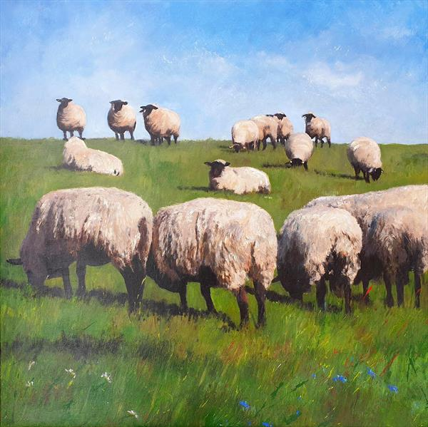 Sheep Grazing by Teresa Tanner