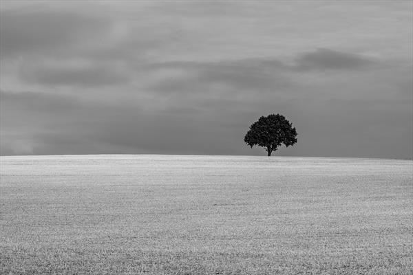 England Countryside #01 by Cristian Stefanescu