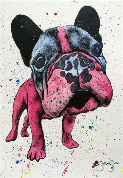 Red Frenchie by Steven Shaw