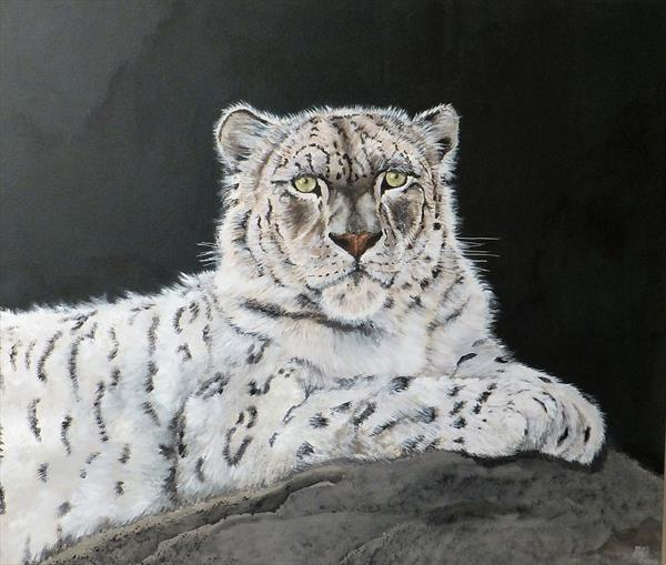 Snow Leopard by Michael Blake