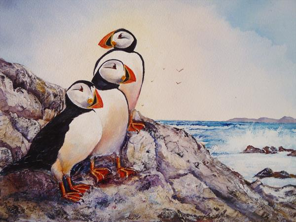 ON THE ROCKS,  JUST PUFFINS by Gill Michael