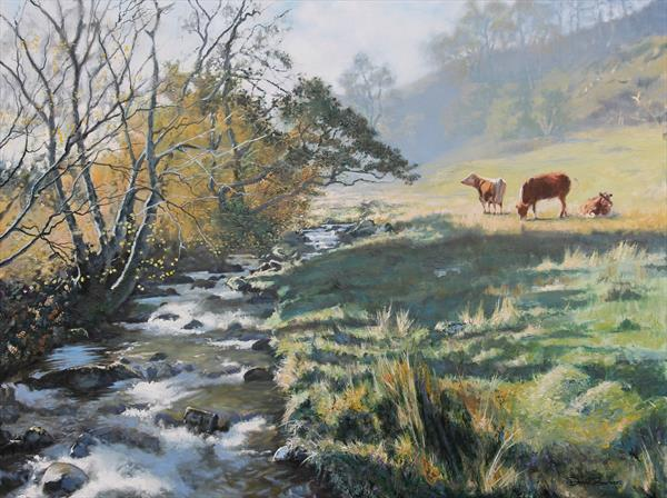 Yewdale Beck by David Barber