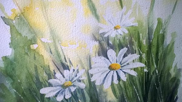 Summer day daisies field bouquet Winsor & Newton Artist Watercolour paper by Elena Haines