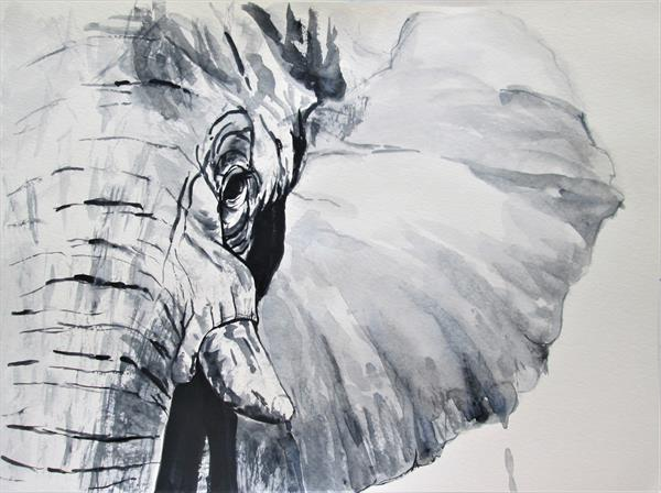 Elephant portrait in black and white, watercolour by Marjan's Art