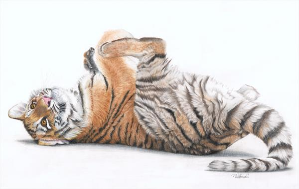 Tiger Feet by Peter Williams