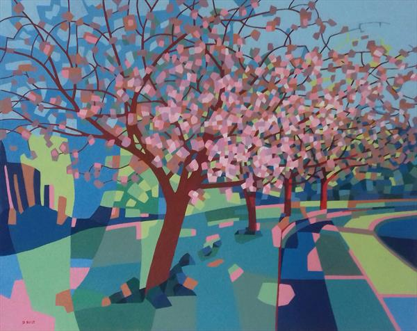 Cherry Trees by David Best