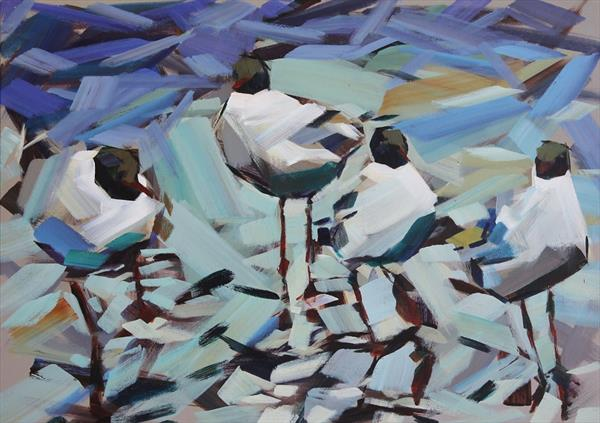 Four gulls in a puddle by Marie Antoniou