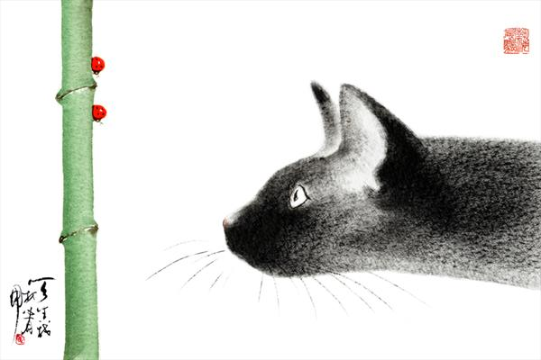Cat With Ladybirds