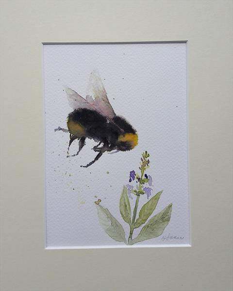 Bee and Sage herb by Teresa Tanner