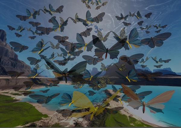 Butterflies by Richard Hopkinson