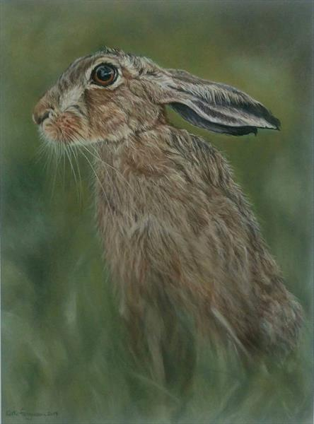 Hare in the morning by Kate Ferguson