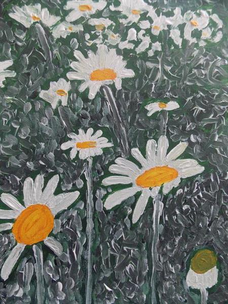 Oxeye daisies, by Ian Dodding