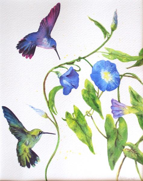 Hummingbirds & Blue Morning Glory