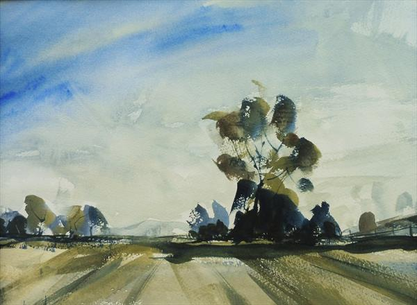 ARABLE FIELDS LANDSCAPE near Chaddesley Corbett, Worcs. (With mount (mat) for UK customers only.) by Tim Taylor