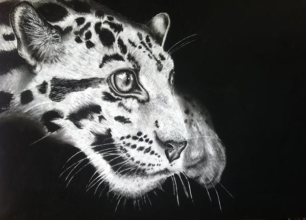 Clouded Leopard by Roseanne Newman
