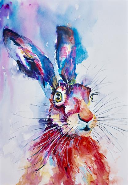 Colourful Hare by Anna Pawlyszyn