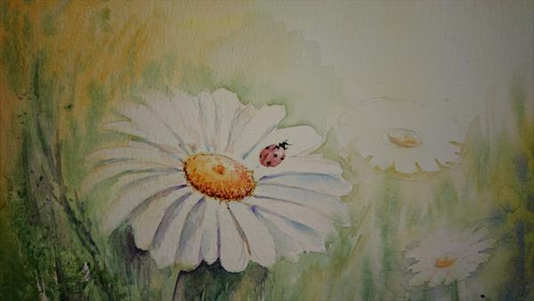 Ladybird with daisies  in the mornings sun Winsor & Newton Artist watercolour paper A4 by Elena Haines