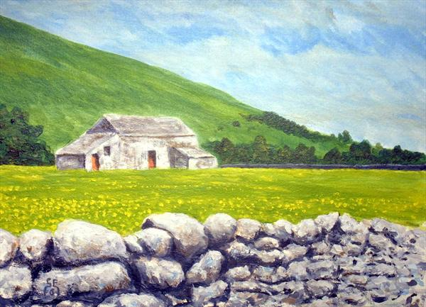 Barn and Buttercups, Upper Teesdale by Gavin Engelbrecht